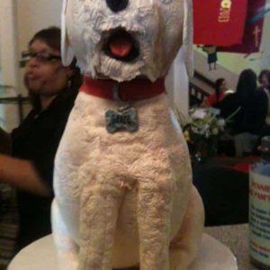 dog cake picnic 2013